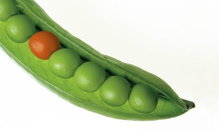 Keywords Alone Can't Save All the Peas in the 'POD'